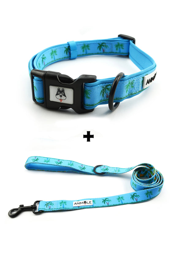 The Gilligan - Collar & Leash