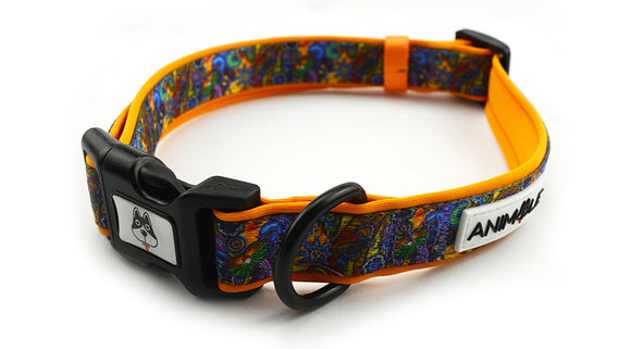 The Walkabout - Collar (Aboriginal Inspired Products)
