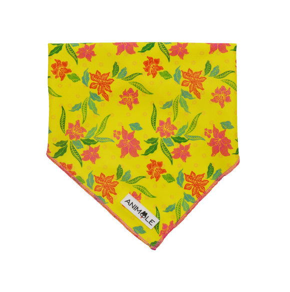 Tropical Sensation - Cooling Bandana