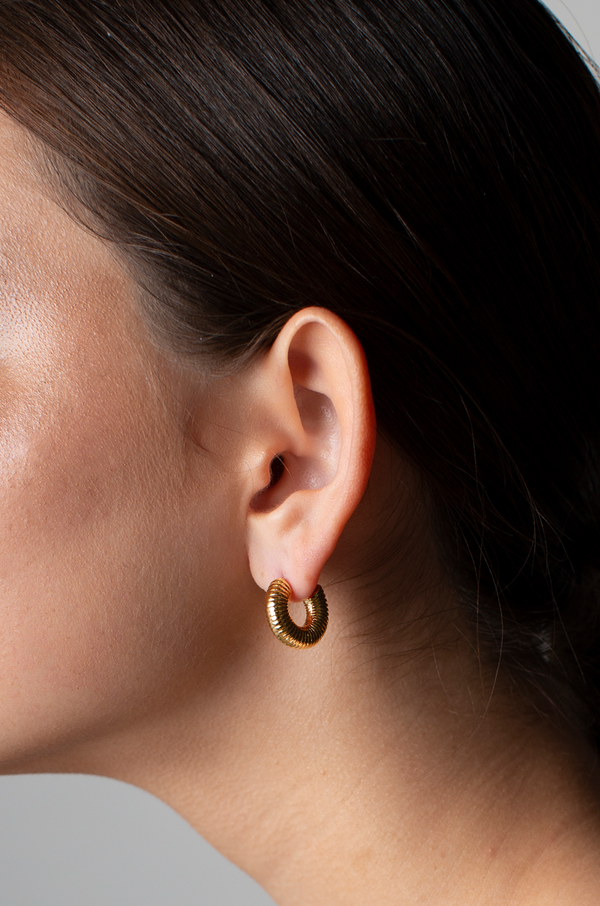 Obi Hoop Earrings / Gold