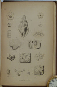 Parkinson, James, 1833. Outlines of Oryctology, An introduction to the Study of Fossil Organic Remains; especially of those Found in the British Strata, and their Connection with the Formation of the Earth