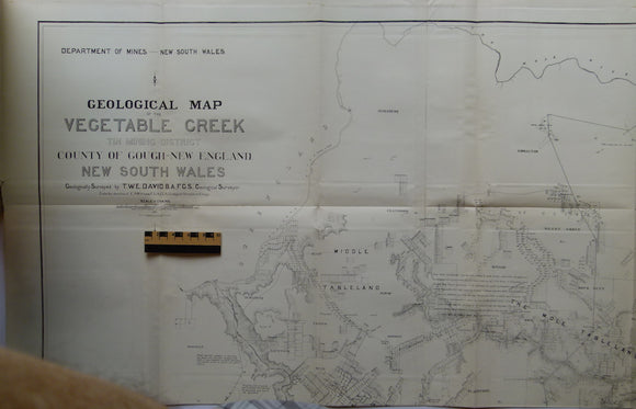 Geological Map of the Vegetable Creek Tin Mining Field, Gough County, New England District, New South Wales 1885