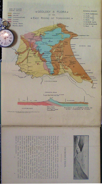Geology and Flora of the East Riding of Yorkshire