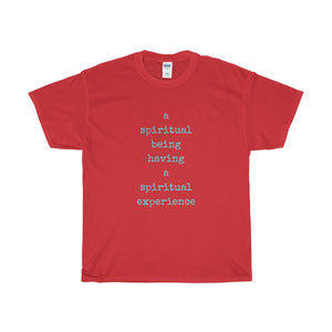 A Spiritual Being Having A Spiritual Experience Unisex Tee - Discount Home & Office