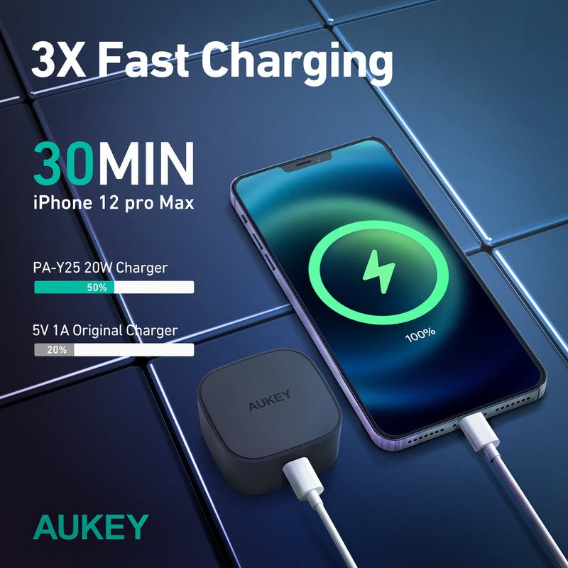 PA-Y25 20W Power Deliver USB C Mini Charger