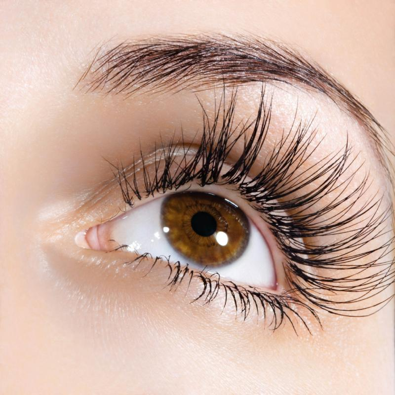 Organic Essential Oil Blend For Eyelash Growth