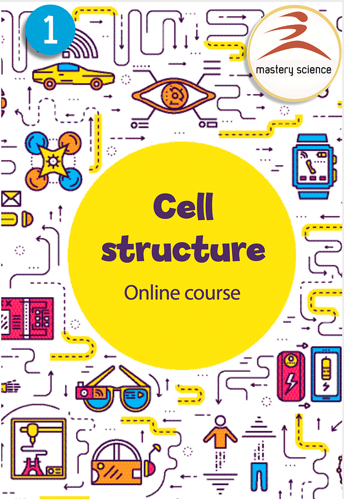 How to Apply: Cell structure (Y7)