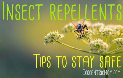 Insect Repellants Tips to Stay Safe
