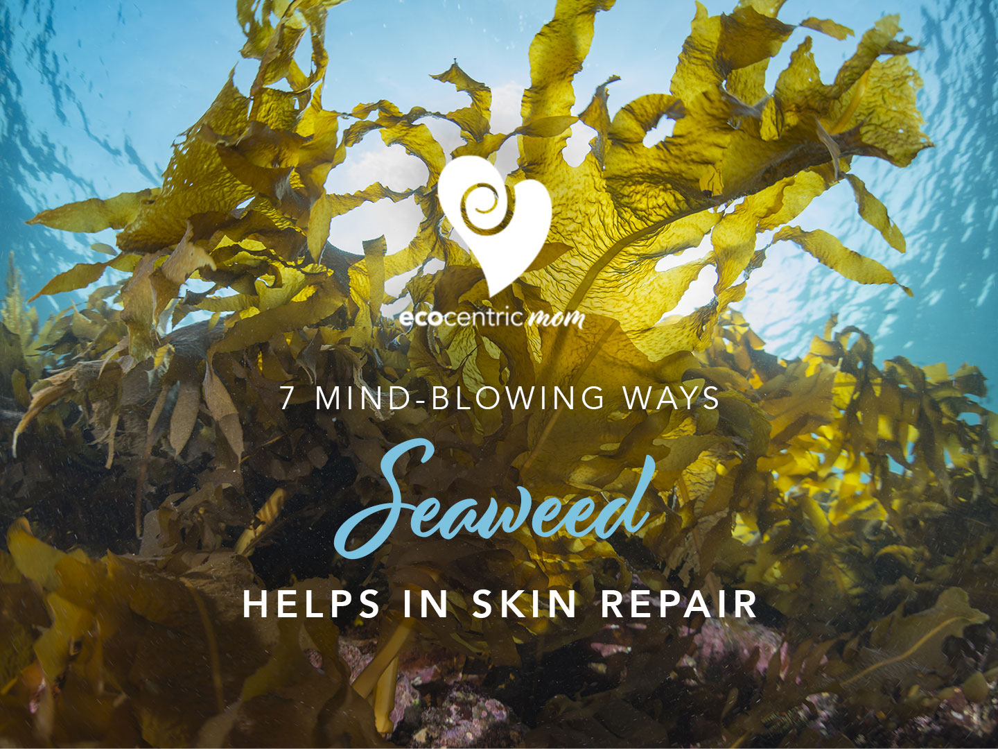 7 Mind-blowing Ways Seaweed Helps In Skin Repair