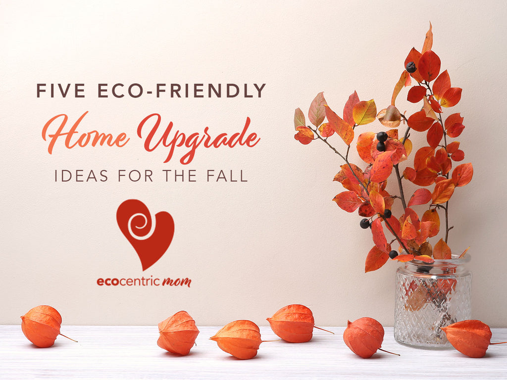 5 Eco-Friendly Home Upgrade Ideas for the Fall
