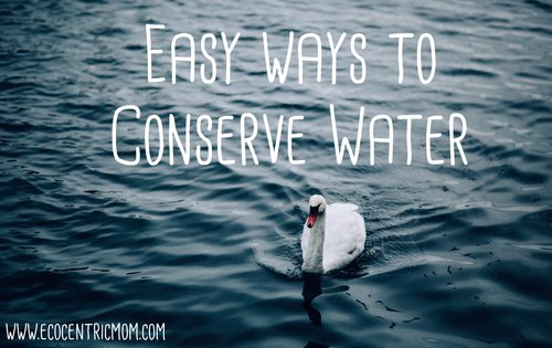 Easy Ways to Conserve Water