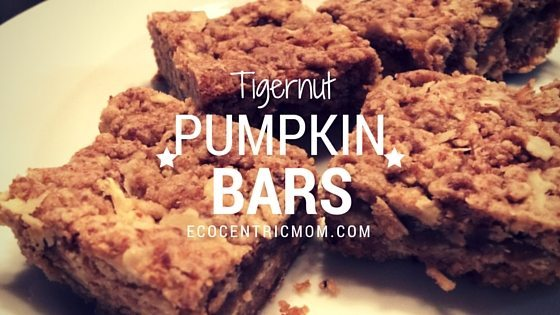 Pumpkin Bar Recipe with TigerNuts