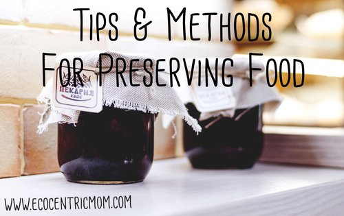 Tips and Methods For Preserving Food