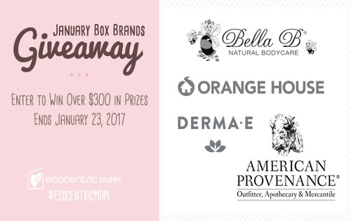 January Box Brands Giveaway – Over $300 in Prizes!