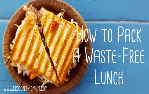 How to Pack a Waste-Free Lunch