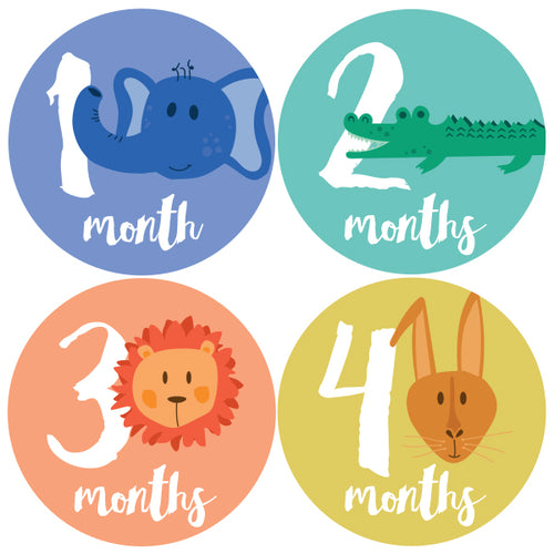 Baby Milestone Stickers by Ecocentric Mom