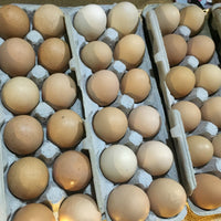 Fresh Eggs (1 dozen)