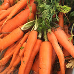 Sweet Carrots (1 bunch)
