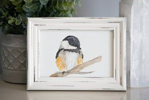 Carolina Chickadee Framed Watercolor Painting
