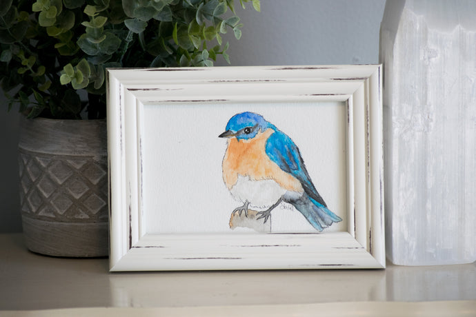 Eastern Blue Bird Framed Watercolor Painting