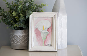 Calla Lily Framed Watercolor Painting