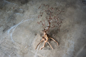 Copper Spiderwood Sculpture