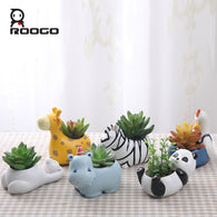 Cartoon Succulent Planter Pot