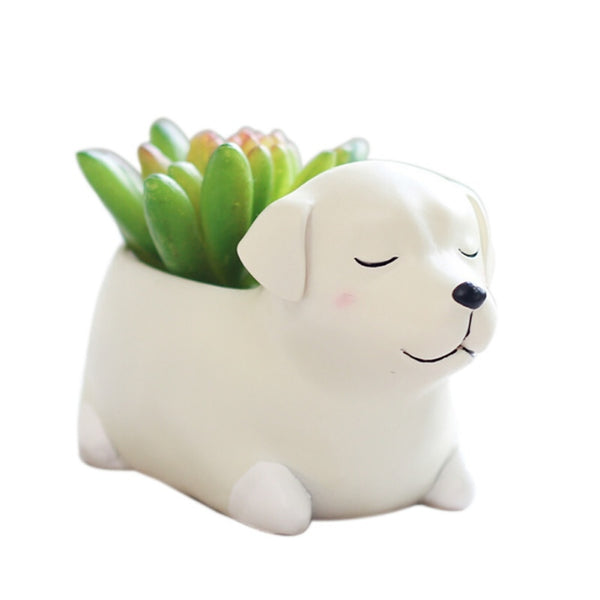 Cute Cartoon Animals Sleeping Pot Plants