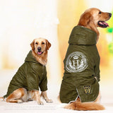Windbreaker For Large Dogs