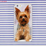 Yorkshire Terrier Hard  Shell Phone Case for Apple iPhones