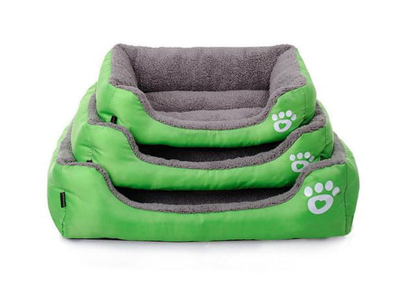 Amazing Colors Sofa For Your Dear Pets - Wish Epic
