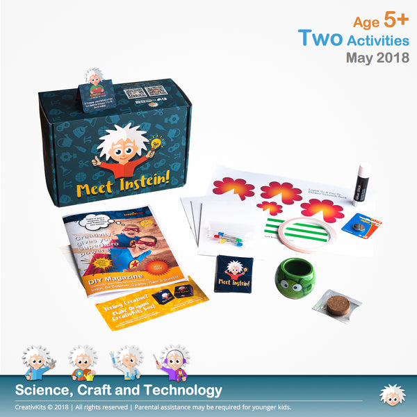 Light Up & Pop Up Flower Circuit Card and Grass Hair | May Standard Science and Tech. Kit | Age 5+