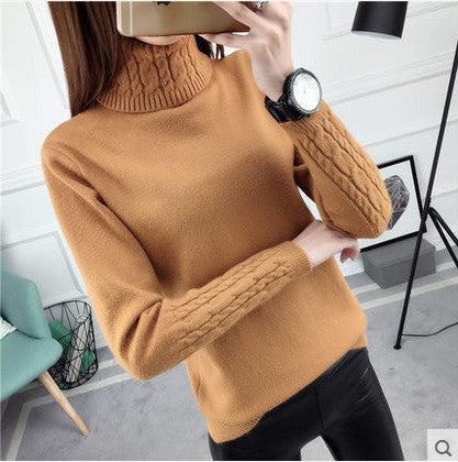 2017 Female Turtleneck Cashmere Sweater Women Knitted sweaters And