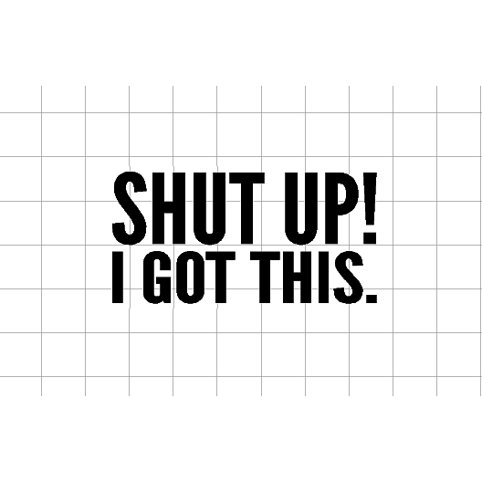 Fast Lane Graphix: Shut Up! I Got This Sticker,White,stickers, decals, vinyl, custom, car, love, automotive, cheap, cool, Graphics, decal