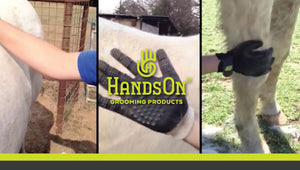 HandsOn Gloves - Must have Grooming Gloves
