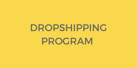 Dropshipping Program