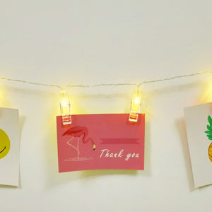 TONGER® Photo Clip LED String Light