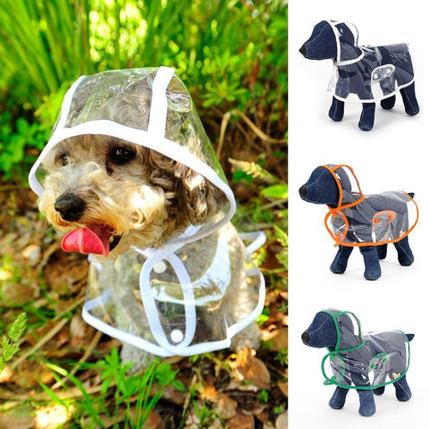 Transparent Dog Raincoat