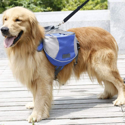 Inspire Uplift BriteDoggy Outdoor Dog Backpack Blue / Small BriteDoggy Outdoor Dog Backpack