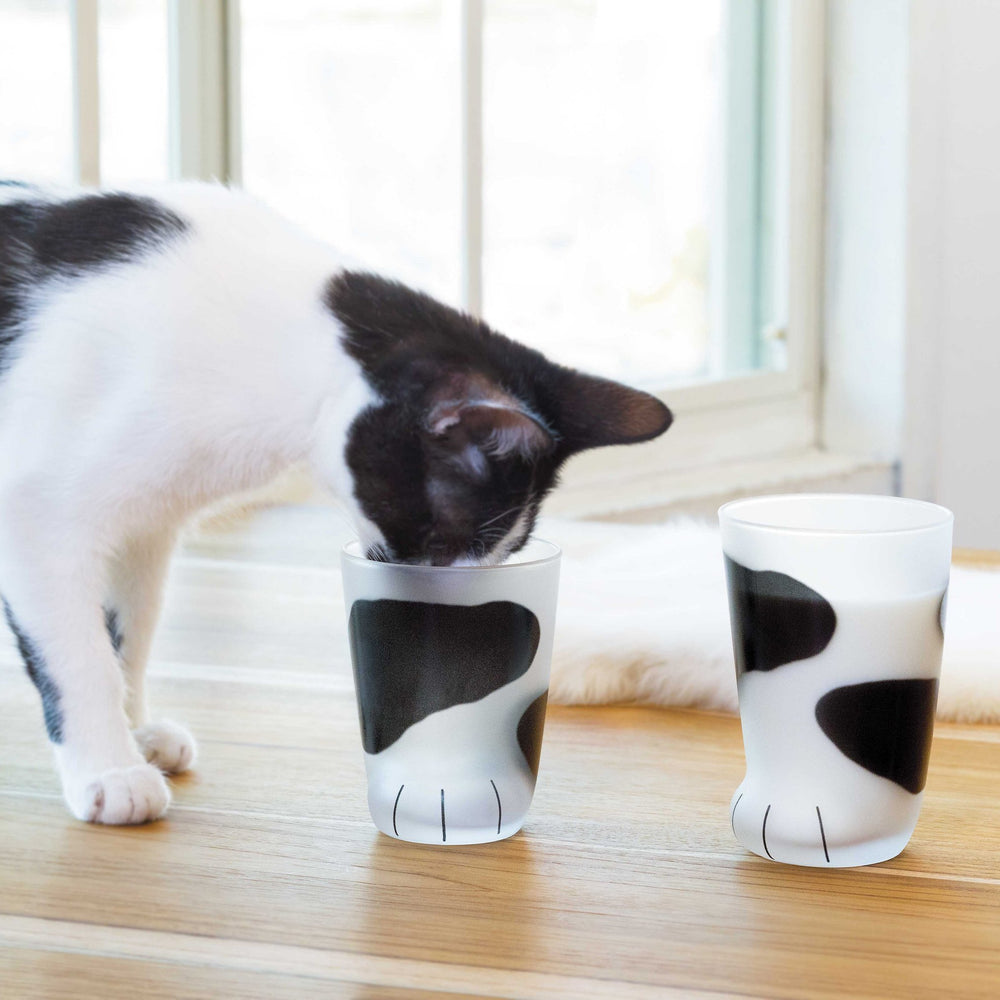 Inspire Uplift Cat Paw Cup Black & White Cat Paw Cup