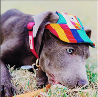 Inspire Uplift dogs Custom Made Machiko Dog Hats... ADORABLE!
