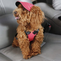 Inspire Uplift dogs Red / S Custom Made Machiko Dog Hats... ADORABLE!