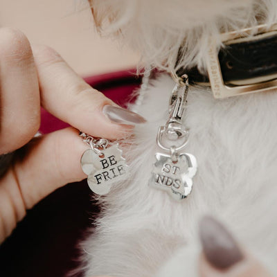 Inspire Uplift Jewelry Best Friend Necklace & Tag for You & Your Dog!