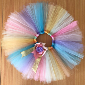 1st Birthday - Rainbow Tutu and Top