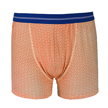 Boxer rosaces oranges