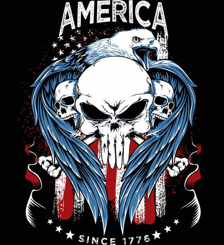 America. Punisher Skull and Bones. Since 1776.