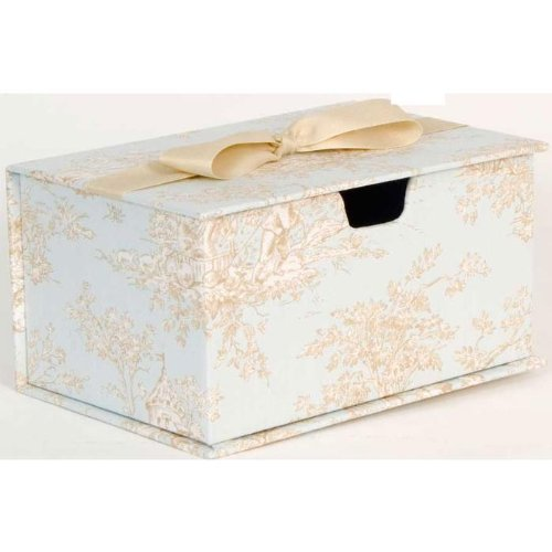 "Glenna Jean Central Park Wipes Box, Blue/Chocolate/Tan/White, 9"" x 6"" x 5"""
