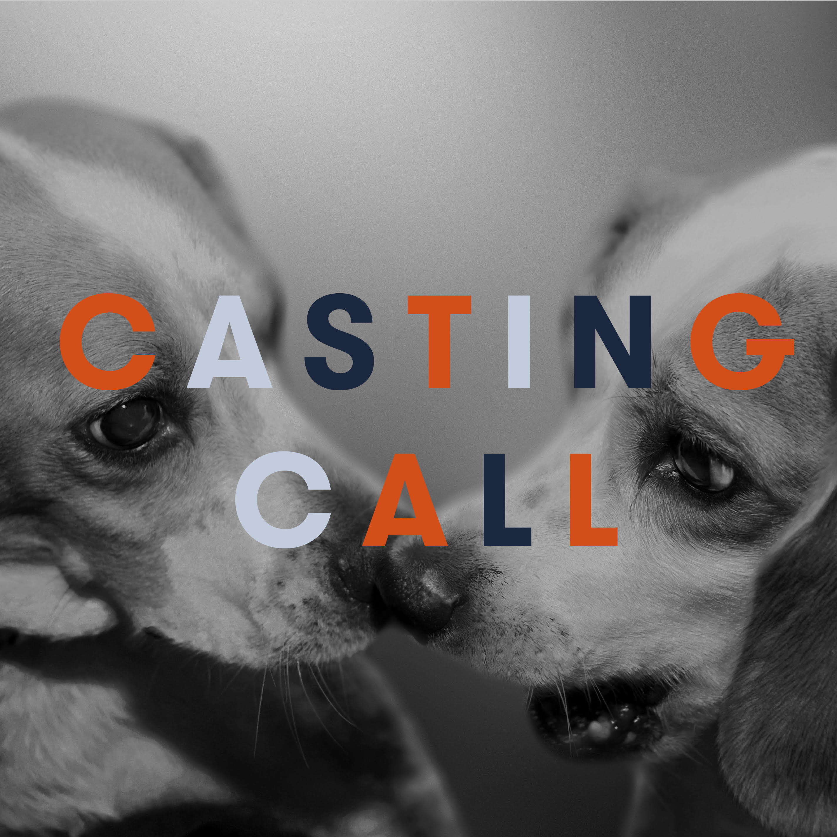 Canine Casting Call