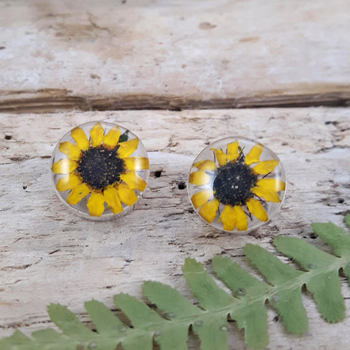 Flores Sunflower Round Stud Earrings