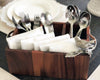 Song Bird Wood Flatware Caddy